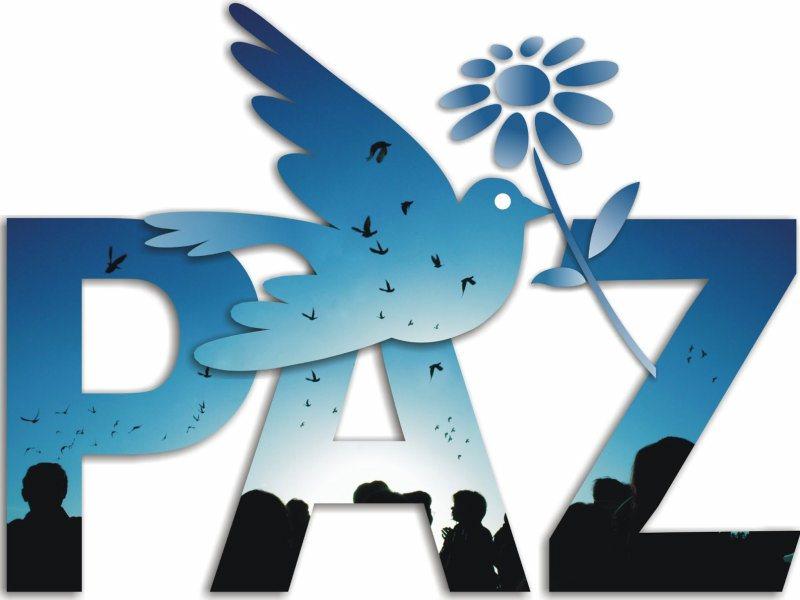 Paz2014mnbgh